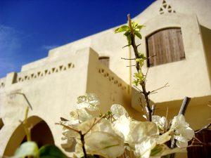 Foto Ägypten 3